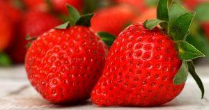 Ocala Annual Habitat Strawberry Festival @ Strawberry Festival | Ocala | Florida | United States